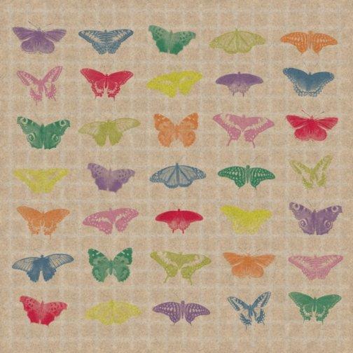 MP16-Coussin-Papillonsredim